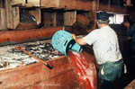 """Spudger"" in the Brining Room in 1990"