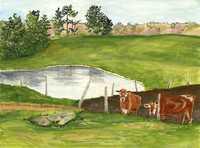 Spring Brook Farm by Anne Tarbox